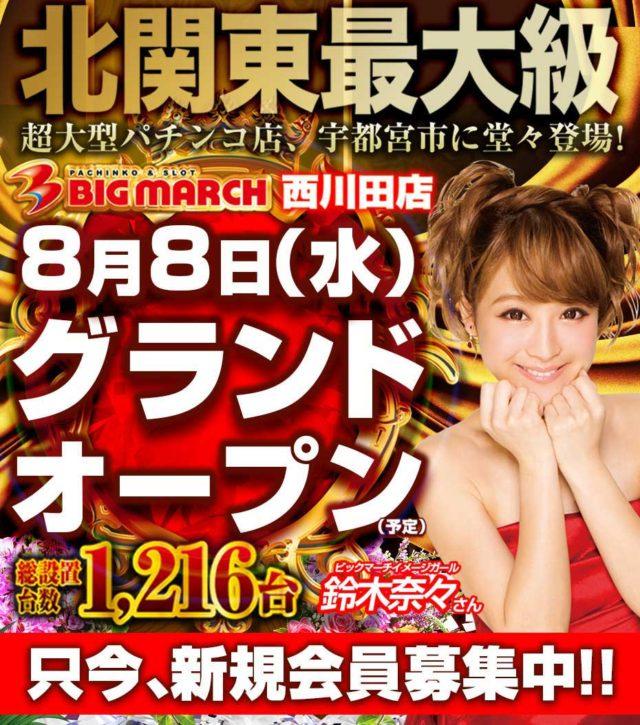 ビックマーチ西川田店