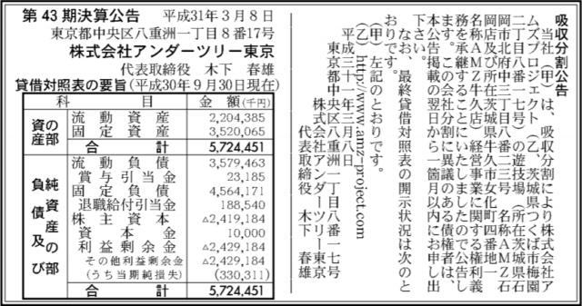 吸収分割公示20190308