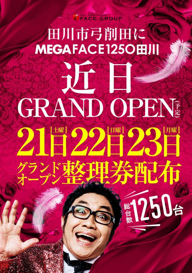メガフェイス1250田川店-2