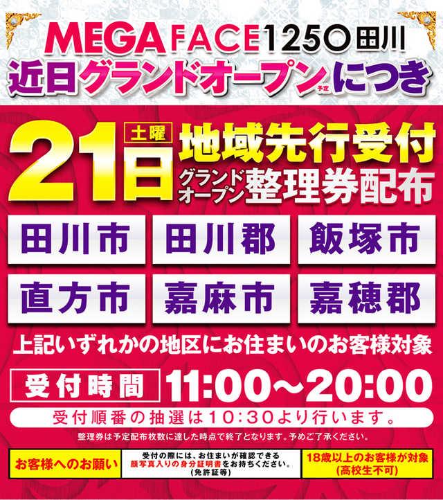 メガフェイス1250田川店-3