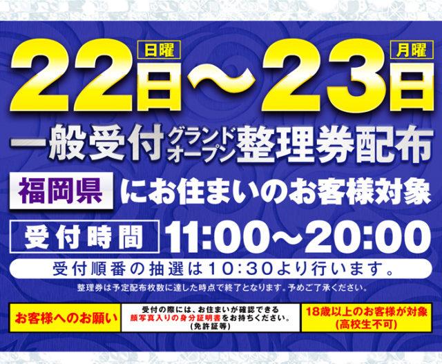 メガフェイス1250田川店-4