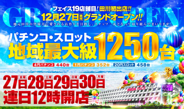 メガフェイス1250田川店-6