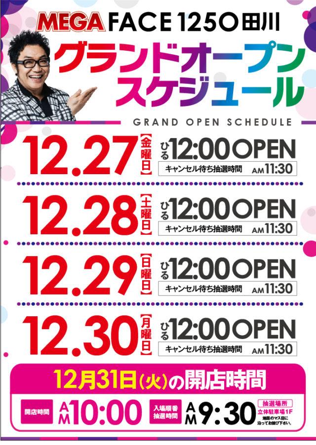 メガフェイス1250田川店-7